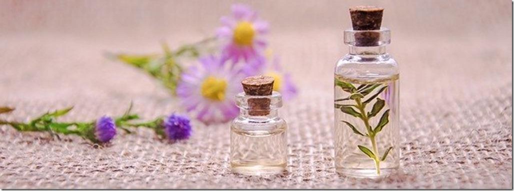 remèdes naturels Hildegarde de Bingen