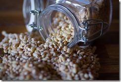 Epeautre en grains
