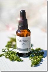 Les huiles essentielles de Tea Tree et Ravinstsara sont immunostimulantes et antivirales