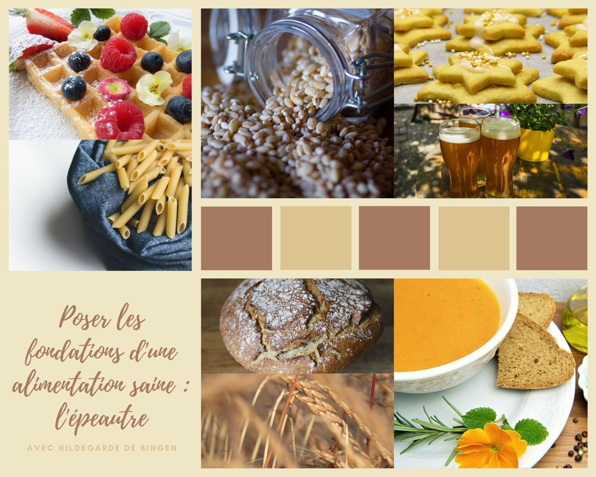 Fondation d'une alimentation saine : l'épeautre