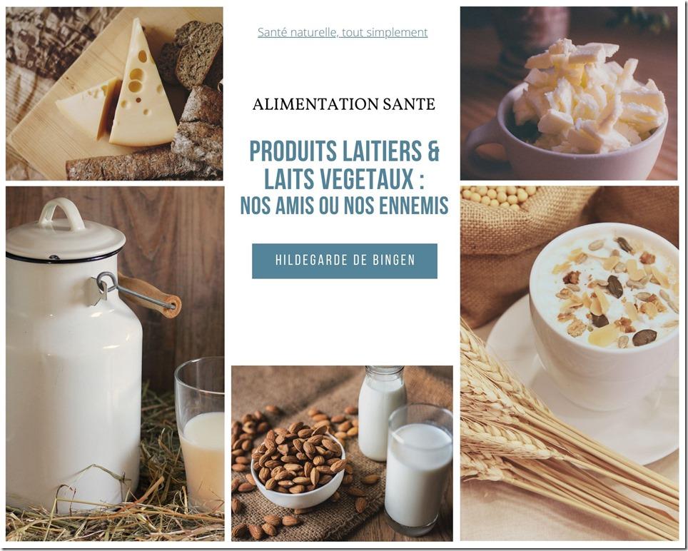 Produits laitiers et laits végétaux : nos amis ou nos ennemis ?