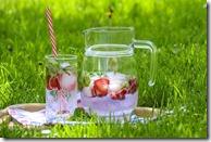 Eau de fruits désaltérante est la boisson idéale pour un pique-nique sain et gourmand