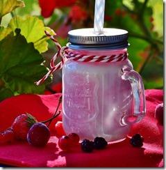 yaourt-a-boire-maison