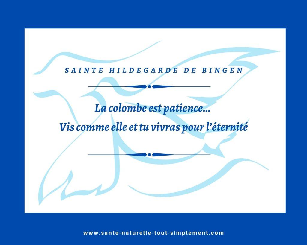 Citation d'Hildegarde de Bingen : vis comme la colombe